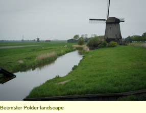 blog_nljournal_pic1.png
