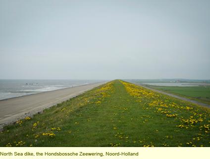 blog_nljournal_pic2b.png