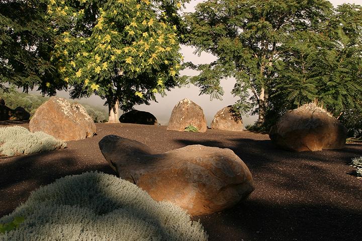 gallery_bouldersandvines_pic24.jpg
