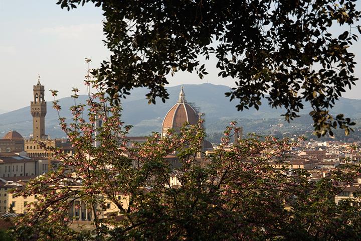 gallery_italianvillas_pic29.jpg