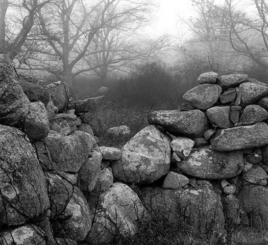 gallery_stonewalls_pic23.jpg