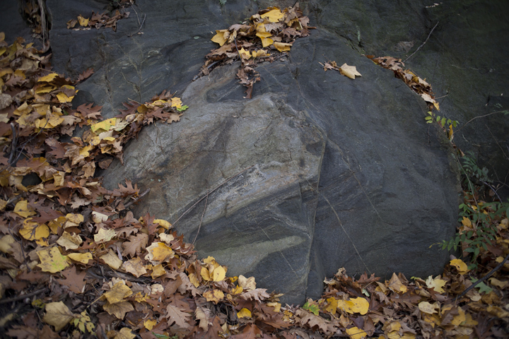 gallery_geologicalfoundations_pic3.jpg