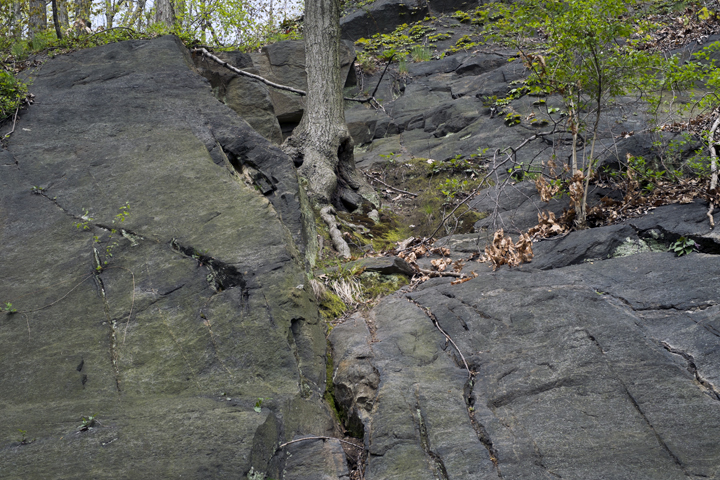 gallery_geologicalfoundations_pic4.jpg