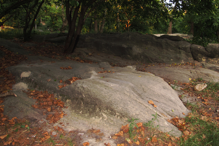 gallery_geologicalfoundations_pic5.jpg