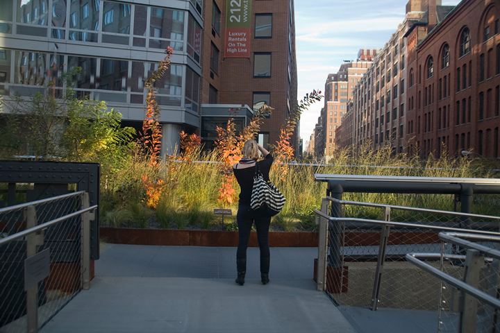 gallery_thehighline_pic19.jpg