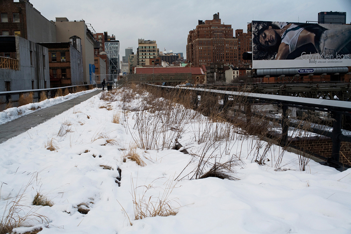 gallery_thehighline_pic9.jpg